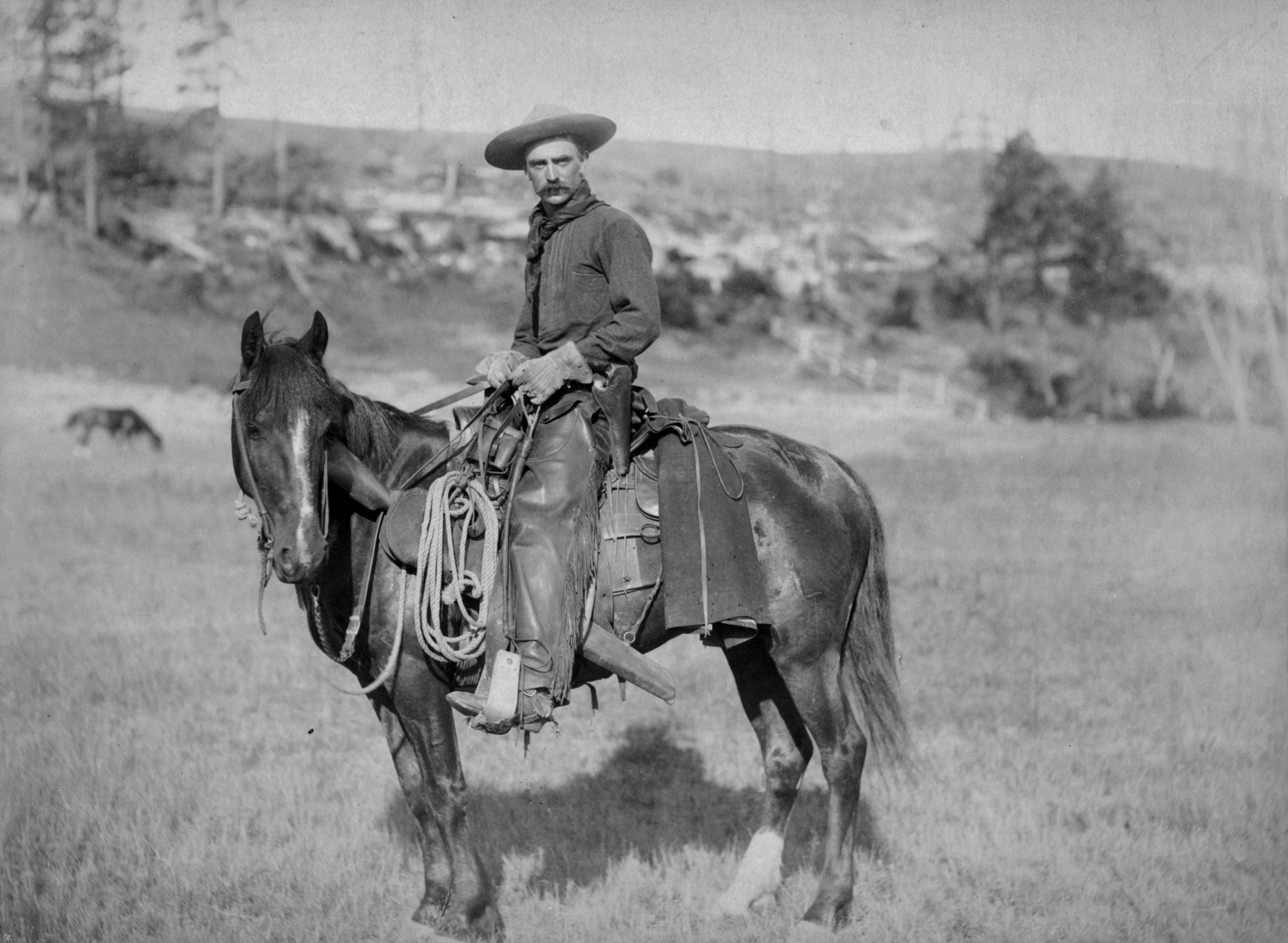 Cattle Drives and Cowboys / What It Was Really Like