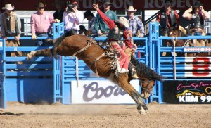 rodeo bronco buster