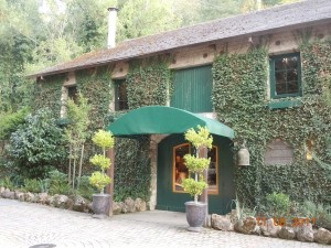 buena vista winery in sonoma county california