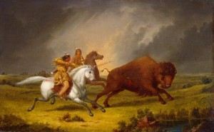 indians buffalo hunting