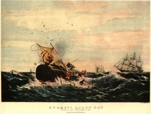 whaling in the 1800s