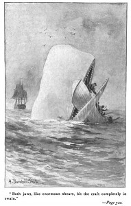 moby dick whale attack