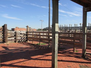 Fort Worth Texas stockyards