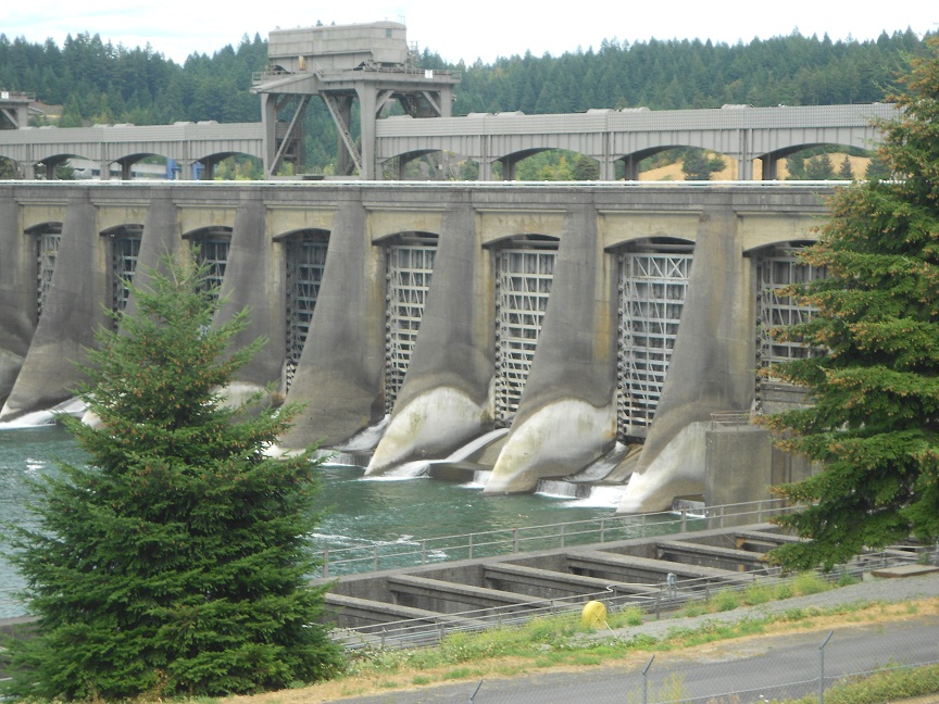 Sites to visit along the beautiful columbia river trips for Fish counts bonneville dam
