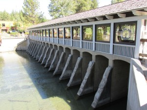 truckee river dam