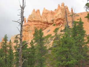 bryce canyon vacation